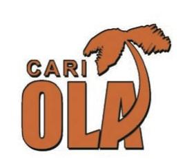 Cariola (Source infoDev)