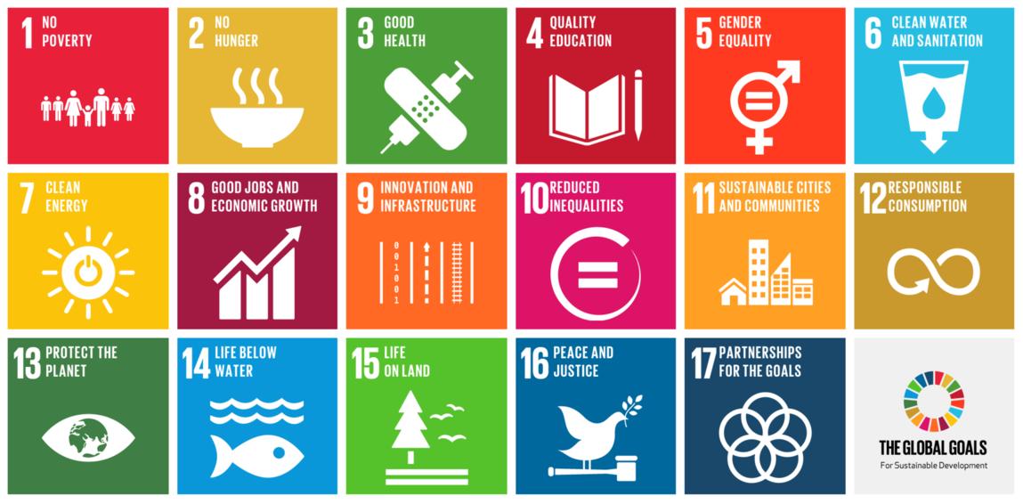 Sustainable Development Goals graphic (Impact 2030)